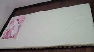 201012242042001